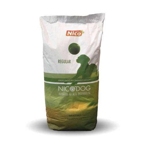 NICO DOG REGULAR